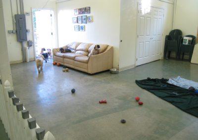 Academy of Canine Behavior Bothell WA - Dog Training, Boarding, Daycare Dog Grooming